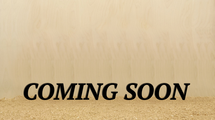Dunecraft Balance Bike Nr. 20 Coming soon